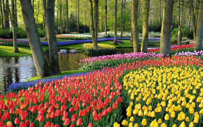 Parque Keukenhof em Amsterdã
